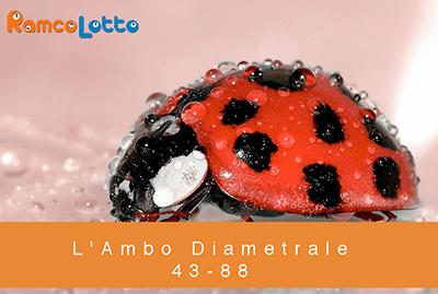 L'Ambo-Diametrale-43-88