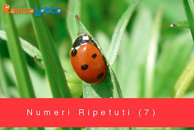 Numeri-Ripetuti-(7)
